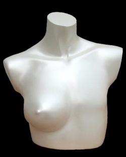 Mastectomy (image - courtesy of mannequinstore.com)